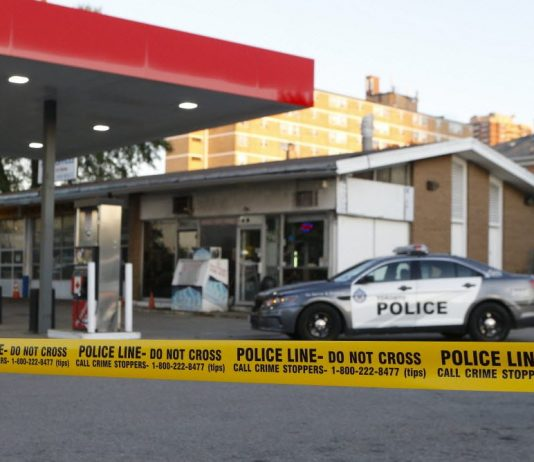 Prime Time Crime News - Breaking Headlines & Crime Reports
